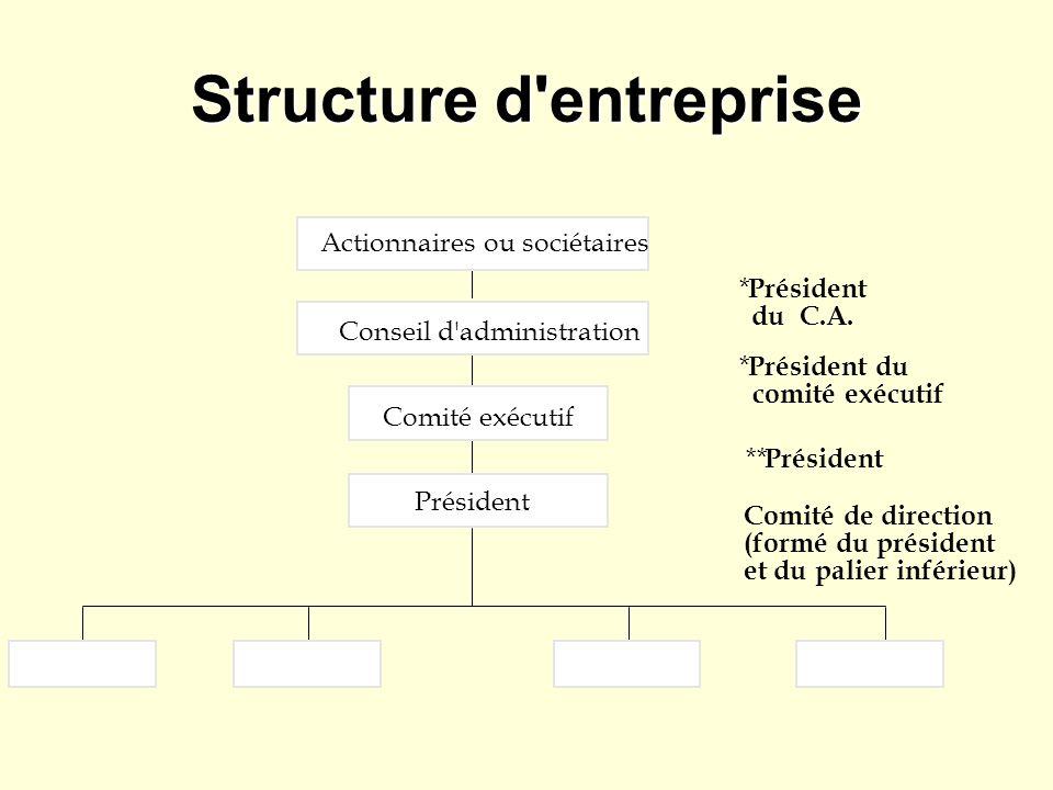 Structure d'entreprise Actionnaires ou sociétaires Conseil d'administration Comité exécutif Président * du C.A. * Président du comité exécutif ** Prés
