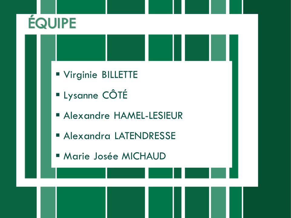Virginie BILLETTE Lysanne CÔTÉ Alexandre HAMEL-LESIEUR Alexandra LATENDRESSE Marie Josée MICHAUD