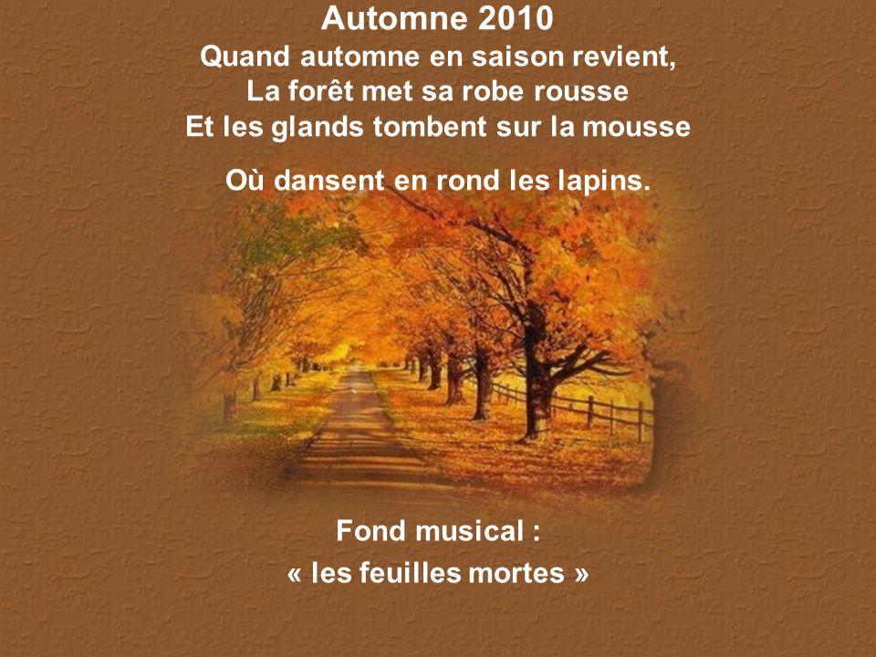 Automne 2010 Quand automne en saison revient, La forêt met sa robe rousse Et les glands tombent sur la mousse Où dansent en rond les lapins.