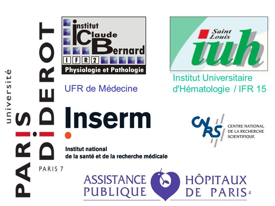 4 Institut Universitaire d'Hématologie / IFR 15 UFR de Médecine
