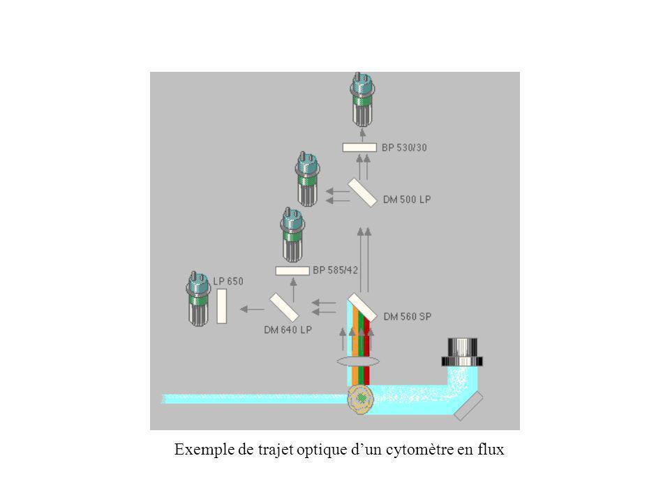 Exemple de trajet optique dun cytomètre en flux