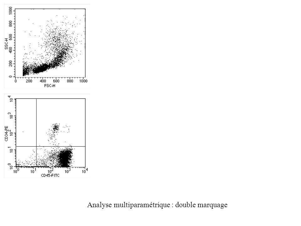 Analyse multiparamétrique : double marquage