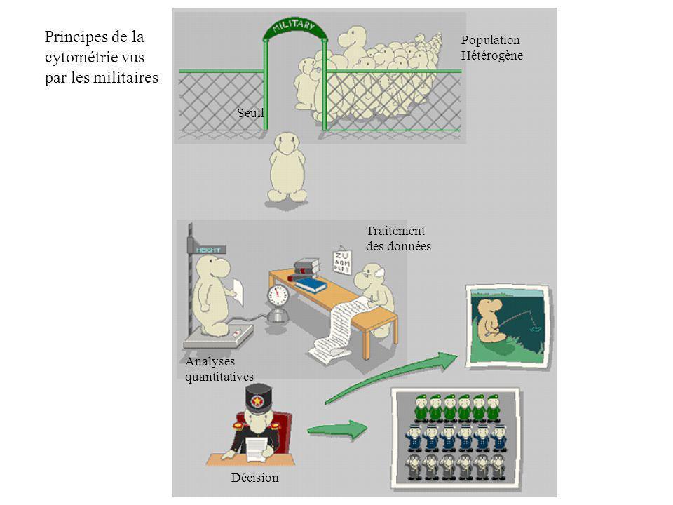 Population Hétérogène Seuil Analyses quantitatives Traitement des données Décision