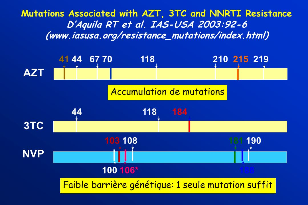 Mutations Associated with AZT, 3TC and NNRTI Resistance DAquila RT et al.