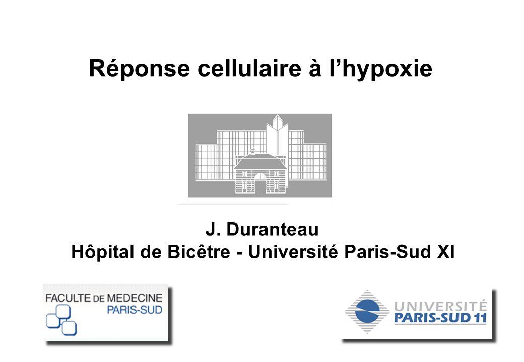 J. Duranteau Hôpital de Bicêtre - Université Paris-Sud XI Réponse cellulaire à lhypoxie