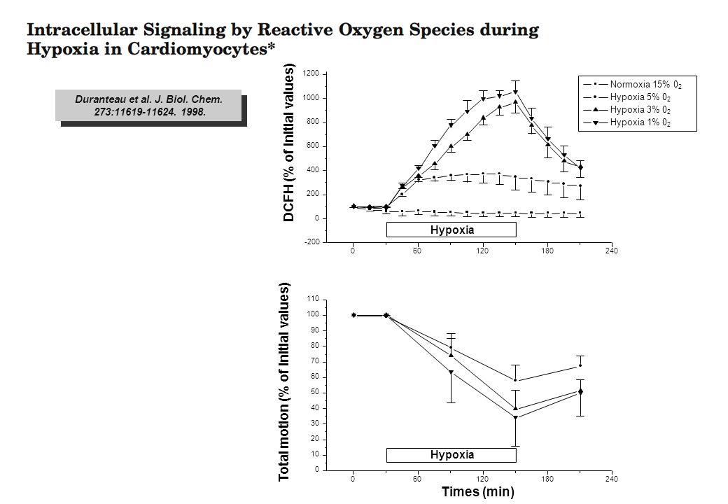 Duranteau et al. J. Biol. Chem. 273:11619-11624. 1998. Duranteau et al. J. Biol. Chem. 273:11619-11624. 1998.