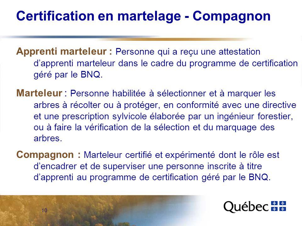 10 Certification en martelage - Compagnon Apprenti marteleur : Personne qui a reçu une attestation dapprenti marteleur dans le cadre du programme de certification géré par le BNQ.