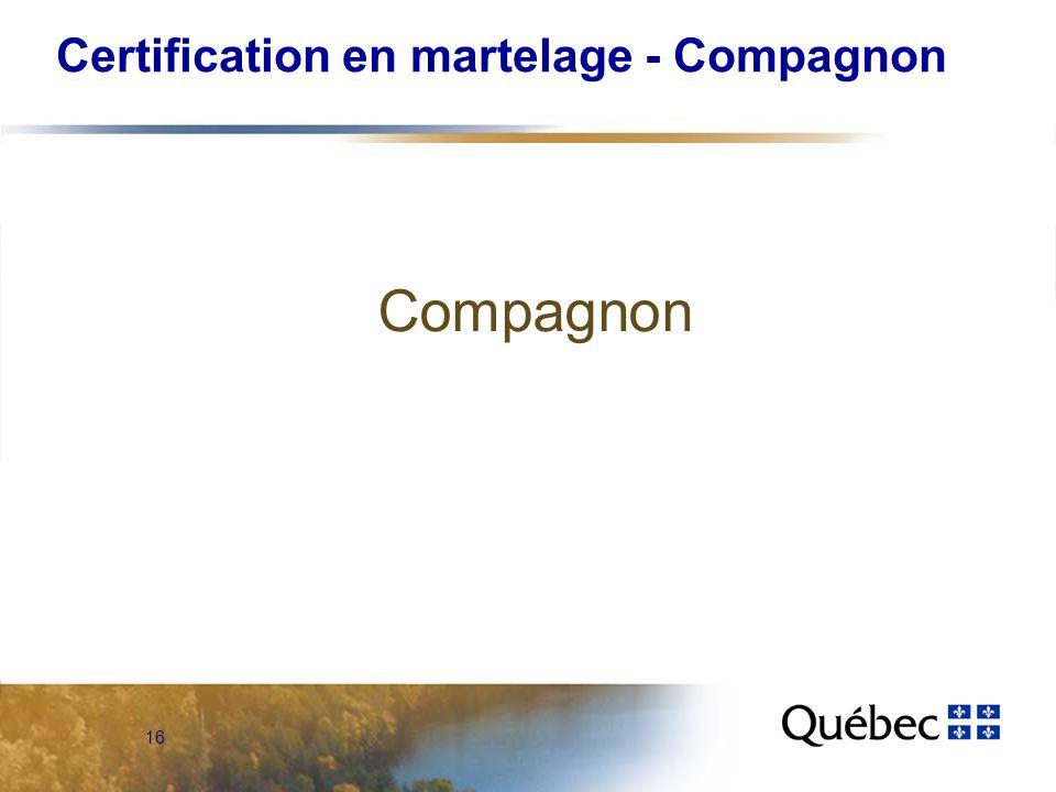 16 Certification en martelage - Compagnon Compagnon