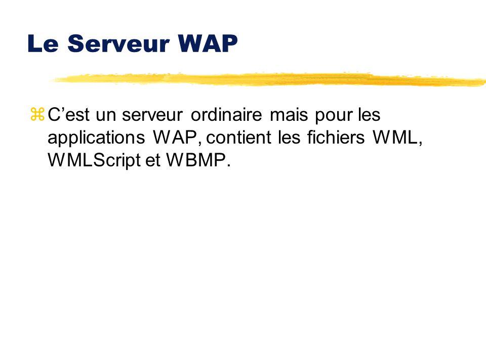 Le Serveur WAP zCest un serveur ordinaire mais pour les applications WAP, contient les fichiers WML, WMLScript et WBMP.