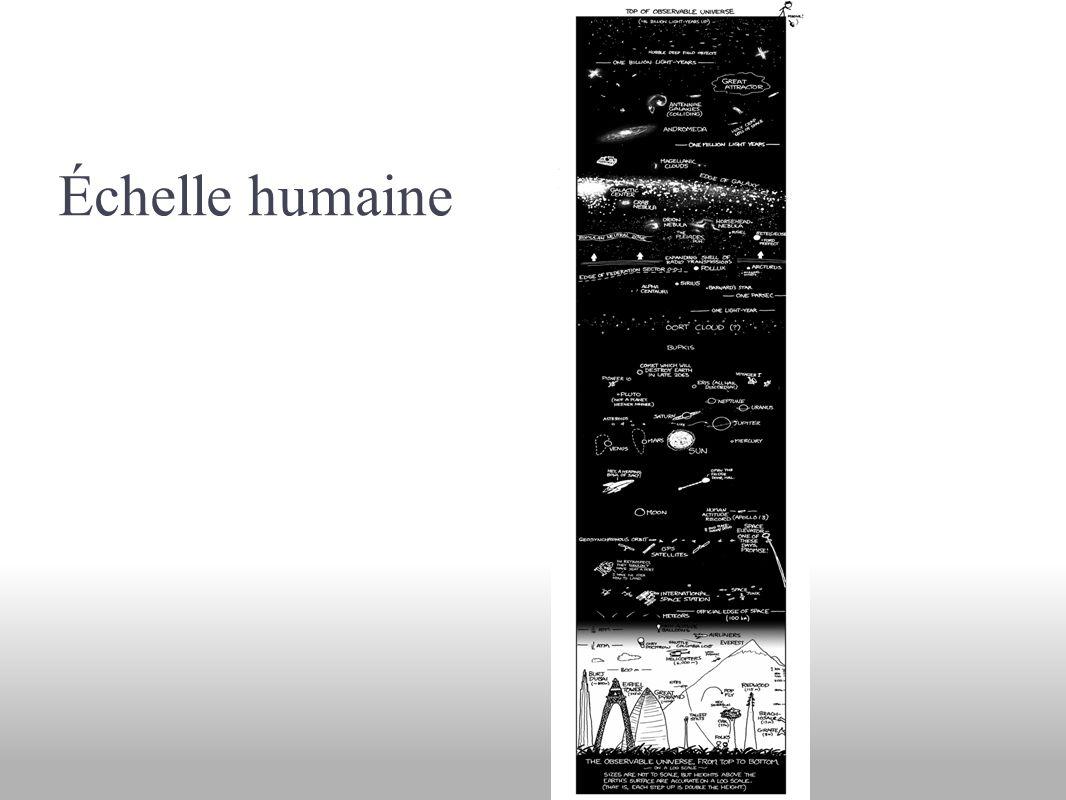 Échelle humaine