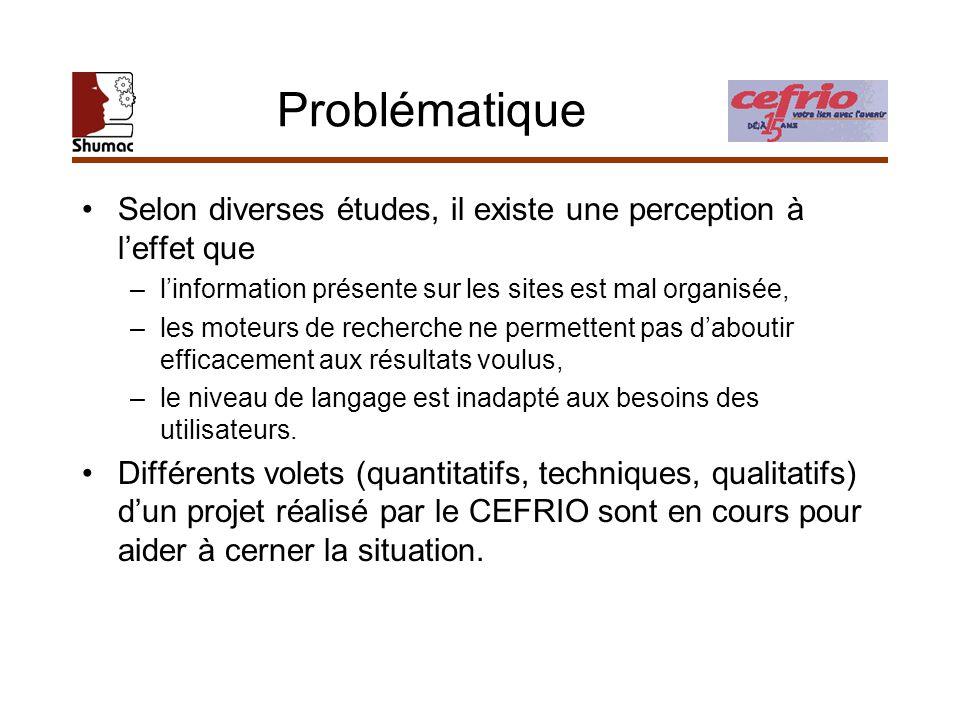 Portée et objectifs Sous-projet dévaluation ergonomique sinscrit sous le volet qualitatif Vise à déterminer si les sites sont –conviviaux, –efficaces, –adéquats au point de vue de linteraction offerte (p.