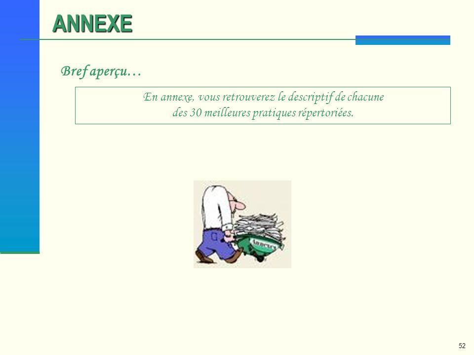 52 ANNEXE Bref aperçu… En annexe, vous retrouverez le descriptif de chacune des 30 meilleures pratiques répertoriées.