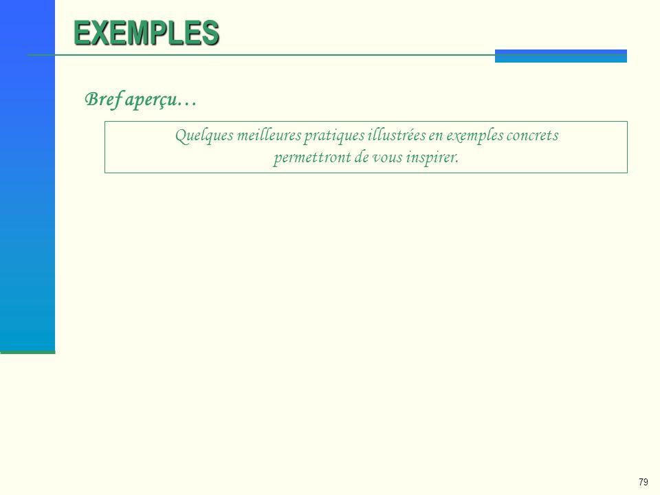 79 EXEMPLES Bref aperçu… Quelques meilleures pratiques illustrées en exemples concrets permettront de vous inspirer.