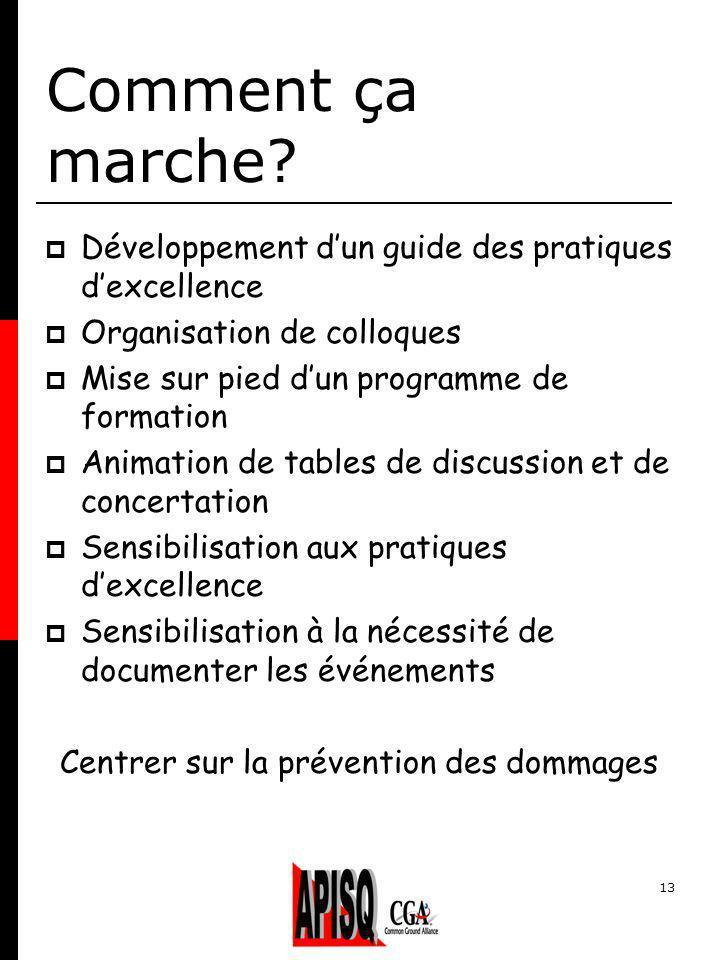 13 Comment ça marche? Développement dun guide des pratiques dexcellence Organisation de colloques Mise sur pied dun programme de formation Animation d