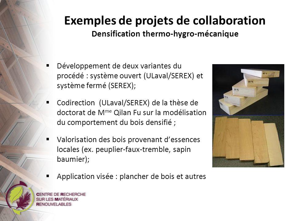 Exemples de projets de collaboration Amélioration de la qualité des huiles pyrolytiques Codirection (ULaval/SEREX) de la thèse de doctorat de M.