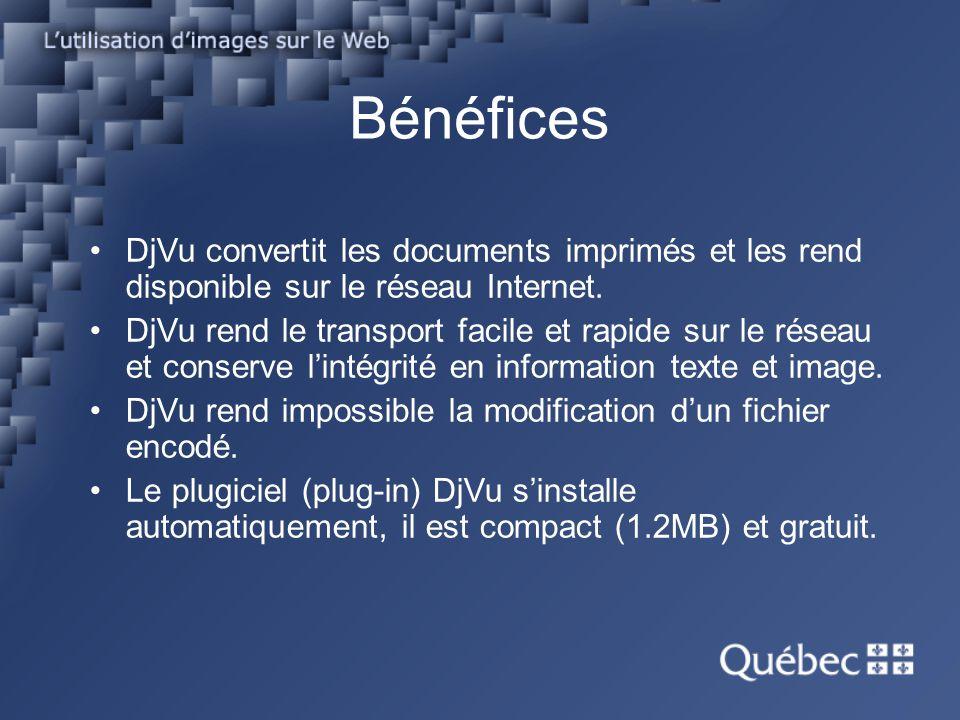 Bénéfices DjVu convertit les documents imprimés et les rend disponible sur le réseau Internet. DjVu rend le transport facile et rapide sur le réseau e