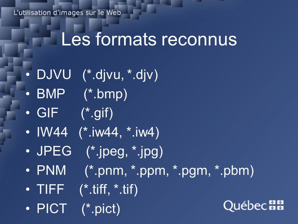 Les formats reconnus DJVU (*.djvu, *.djv) BMP (*.bmp) GIF (*.gif) IW44 (*.iw44, *.iw4) JPEG (*.jpeg, *.jpg) PNM (*.pnm, *.ppm, *.pgm, *.pbm) TIFF (*.t