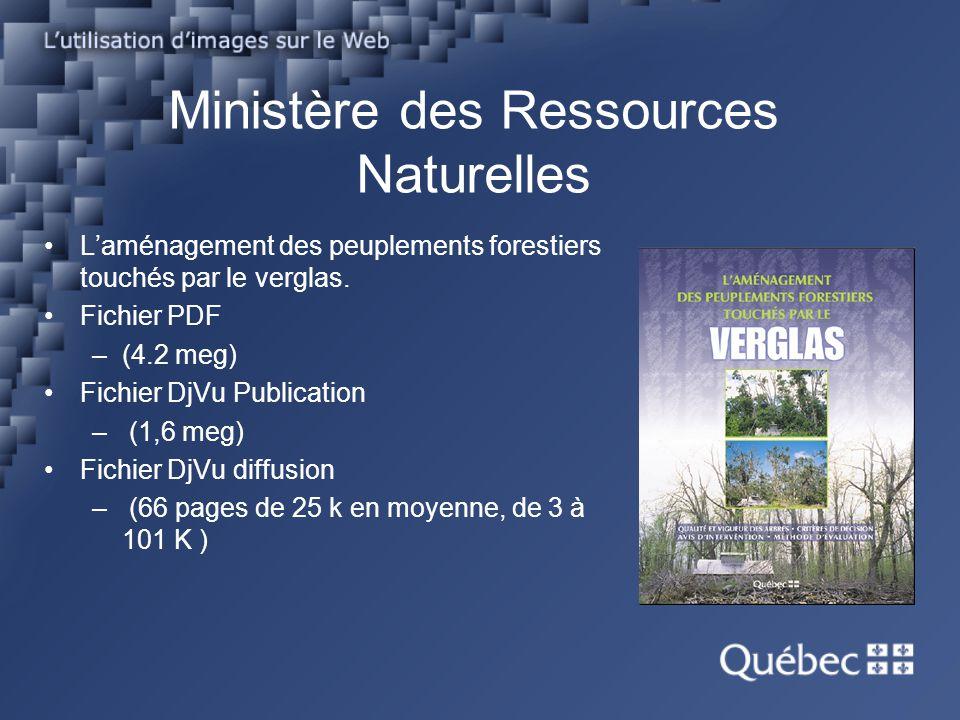 Ministère des Ressources Naturelles Laménagement des peuplements forestiers touchés par le verglas. Fichier PDF –(4.2 meg) Fichier DjVu Publication –