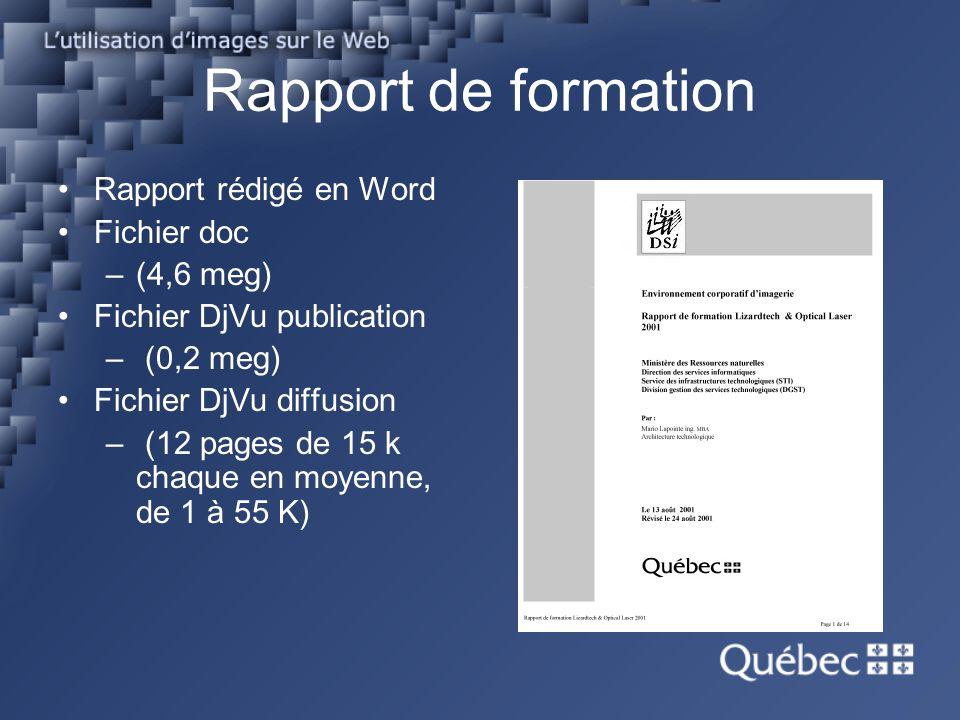 Rapport de formation Rapport rédigé en Word Fichier doc –(4,6 meg) Fichier DjVu publication – (0,2 meg) Fichier DjVu diffusion – (12 pages de 15 k cha