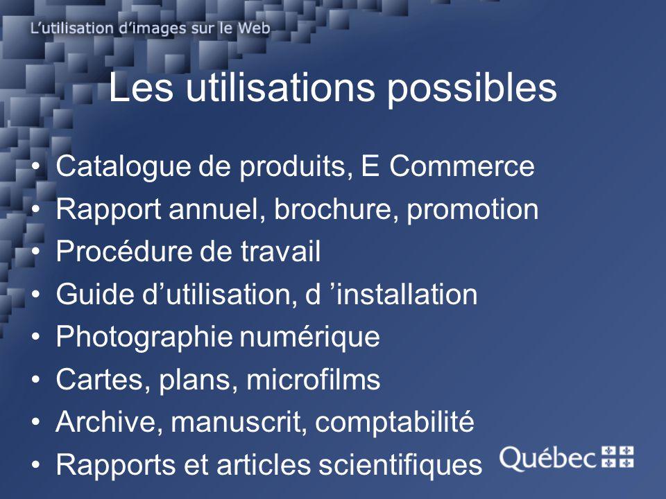 Les utilisations possibles Catalogue de produits, E Commerce Rapport annuel, brochure, promotion Procédure de travail Guide dutilisation, d installati