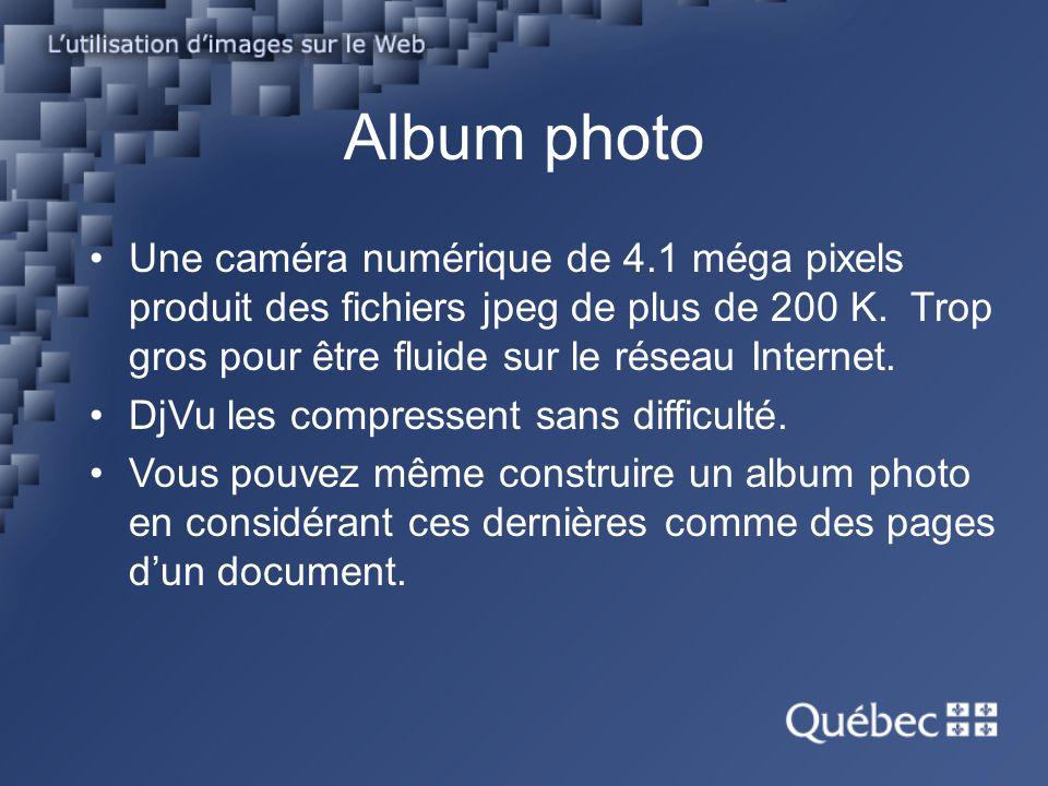 Album photo Une caméra numérique de 4.1 méga pixels produit des fichiers jpeg de plus de 200 K. Trop gros pour être fluide sur le réseau Internet. DjV