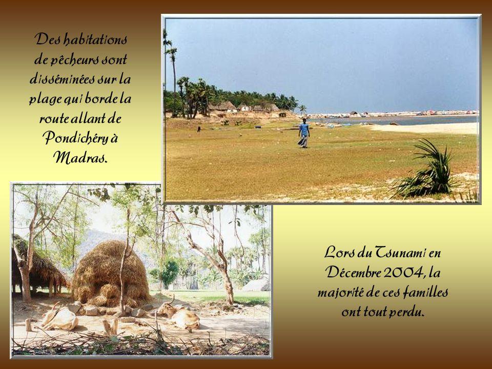 Une route relie les villes de Pondichéry à Madras en longeant la mer. Des plages paradisiaques pour le touriste mais beaucoup moins pour les pêcheurs