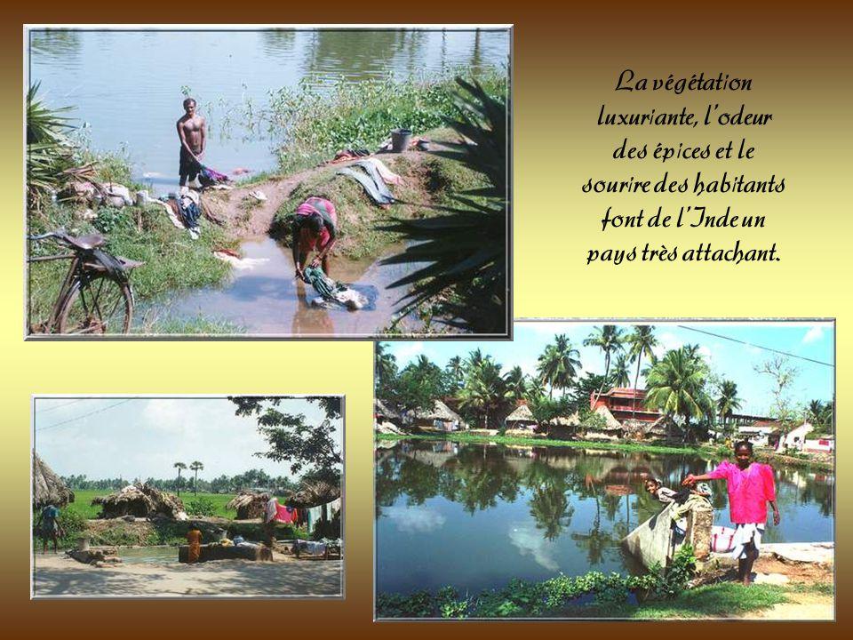 Les lavandières sur le bord du fleuve Godavari. Le spectacle des saris multicolores est un enchantement pour le regard.