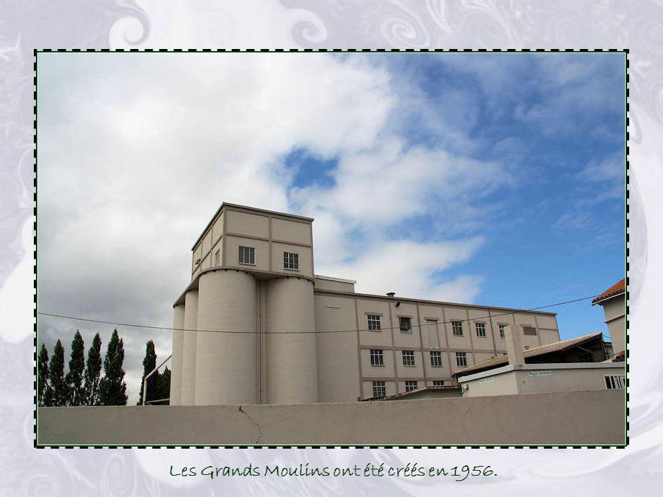 Les Marronniers Cette vaste demeure fut construite en 1807 par Victor Cormier et son épouse. Le Sieur Cormier fut nommé maire dAizenay en 1837 et le r