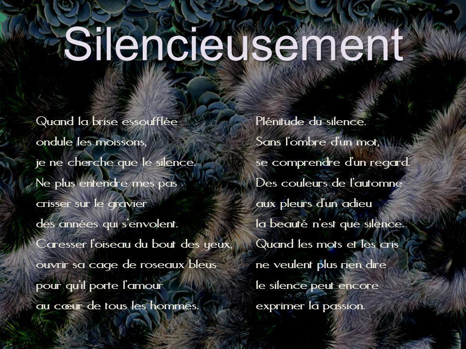 Silencieusement Quand la brise essoufflée ondule les moissons, je ne cherche que le silence.