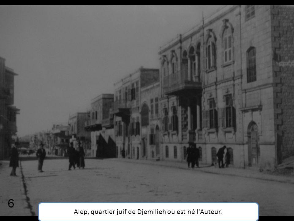 Alep, quartier juif de Djemilieh où est né l Auteur.