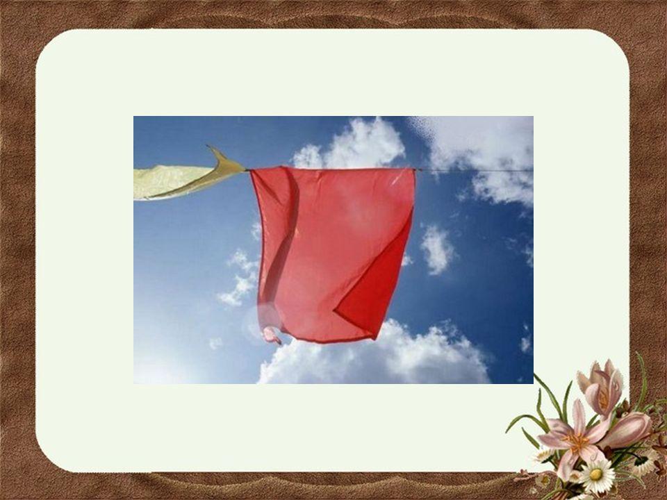 Elle étendait ses enveloppes de taies d'oreillers et ses beaux draps blancs en terminant sa première cordée avec les sous-vêtements toujours d'un blan