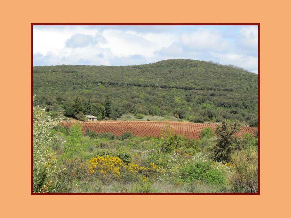 Carabelles et Moulins à Faugères Situés dans le département de Hérault Région Languedoc-Roussillon France