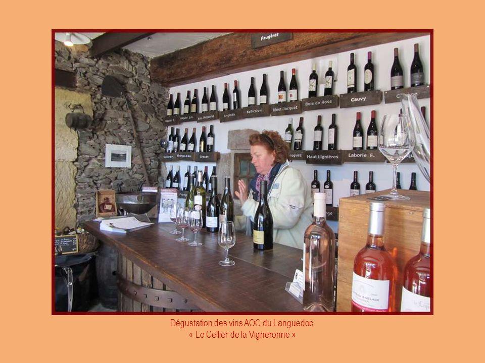 A Faugères, les vignobles sont réputés. Halte chez un producteur.