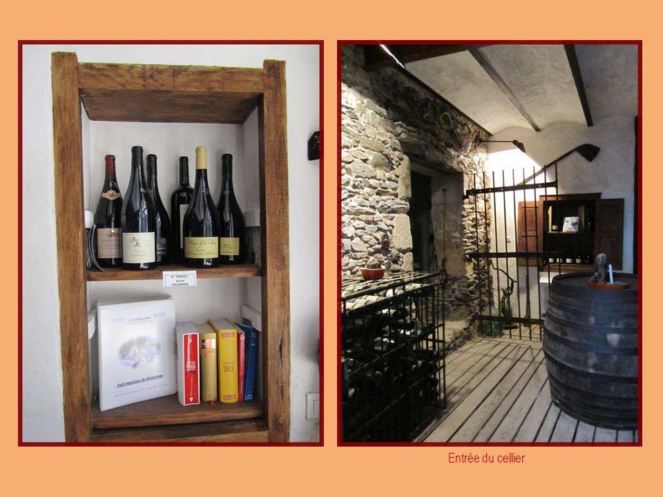 Dégustation des vins AOC du Languedoc. « Le Cellier de la Vigneronne »