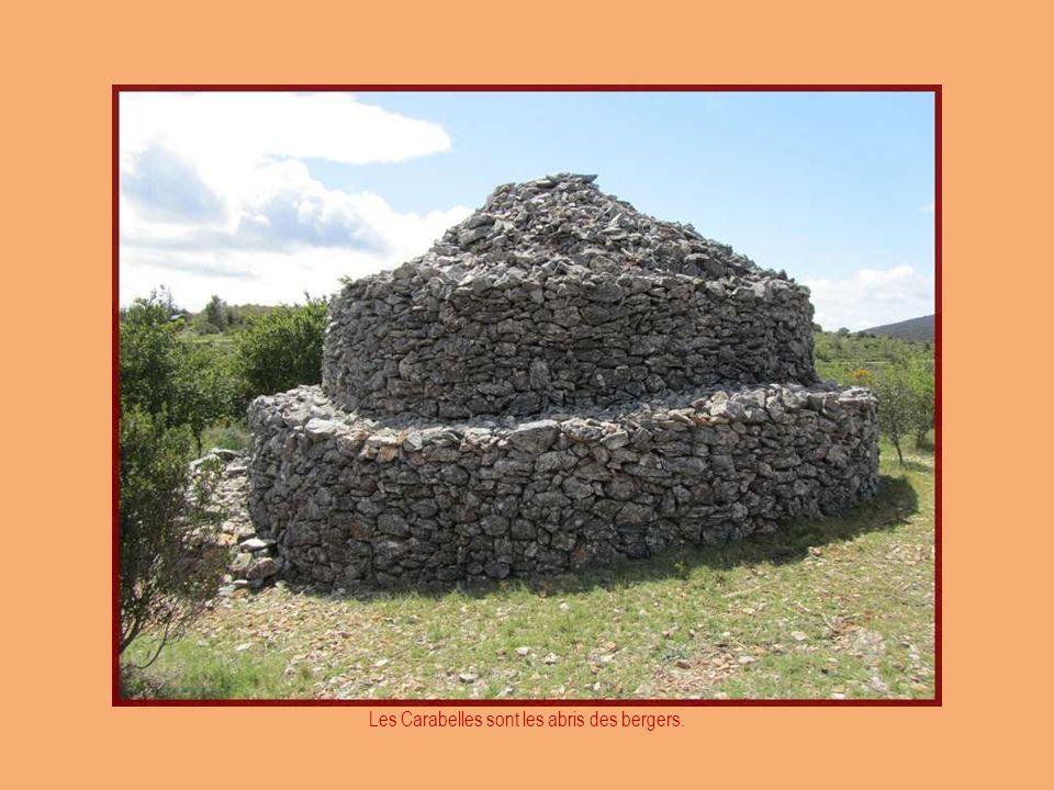 Bien au-dessus du village, une petite marche nous mène au sommet de la colline, sur des chemins bordés de murs en pierre sèche, parsemés de « Capitell