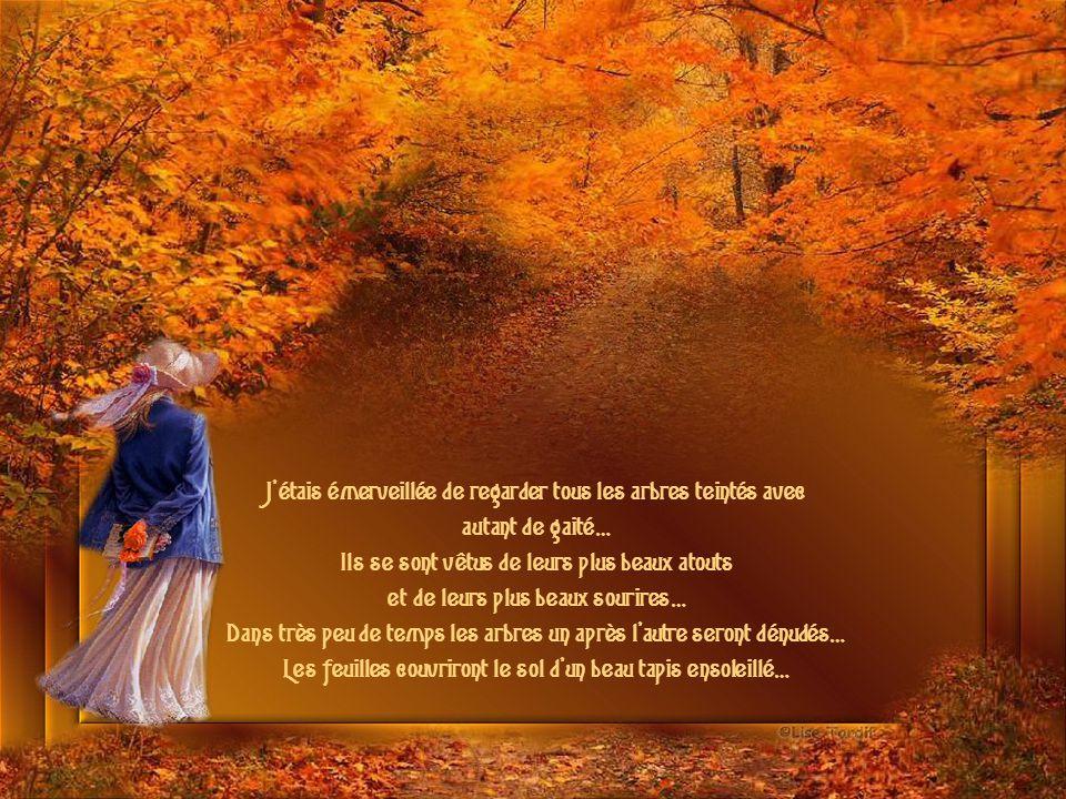 Quelle belle journée d automne Texte : © Pierrette Beaulieu Je vous souhaite un BEL AUTOMNE Musique : Autumn Leaves Interprété par Richard Clayderman Création : Lise Tardif ( Oct.