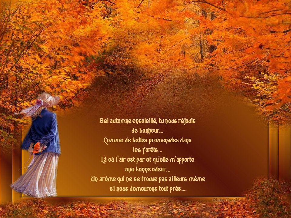 Bel automne ensoleillé, tu nous réjouis de bonheur… Comme de belles promenades dans les forêts… Là où l air est pur et qu elle m apporte une bonne odeur… Un arôme qui ne se trouve pas ailleurs même si nous demeurons tout près…