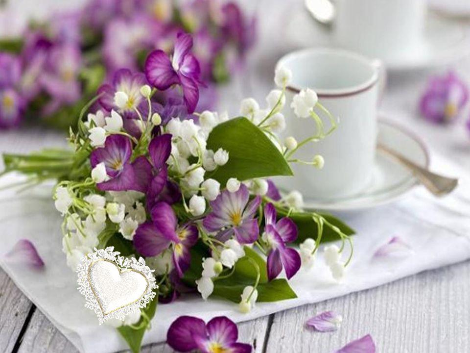 Mais les mots les plus doux sont ceux qui changent tout et que l on garde dans notre cœur sous verrou.