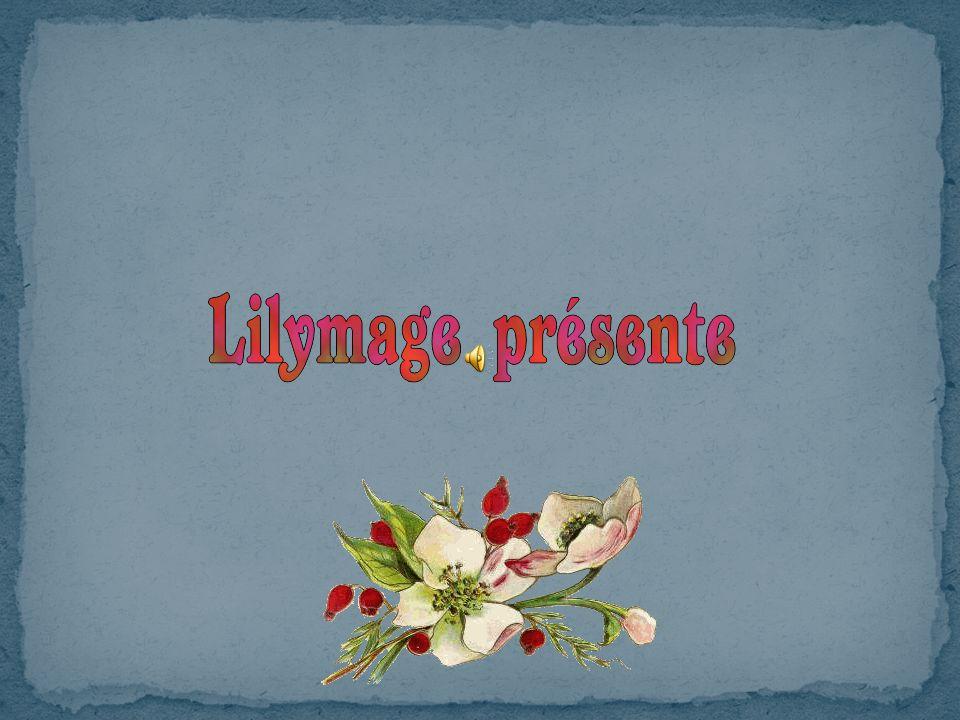 Lindifférence est une infirmité de lesprit et du cœur. Françoise Giroud