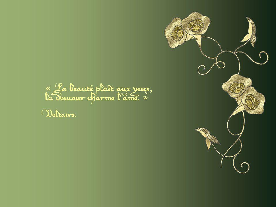 « La beauté plaît aux yeux, la douceur charme l âme. » Voltaire.