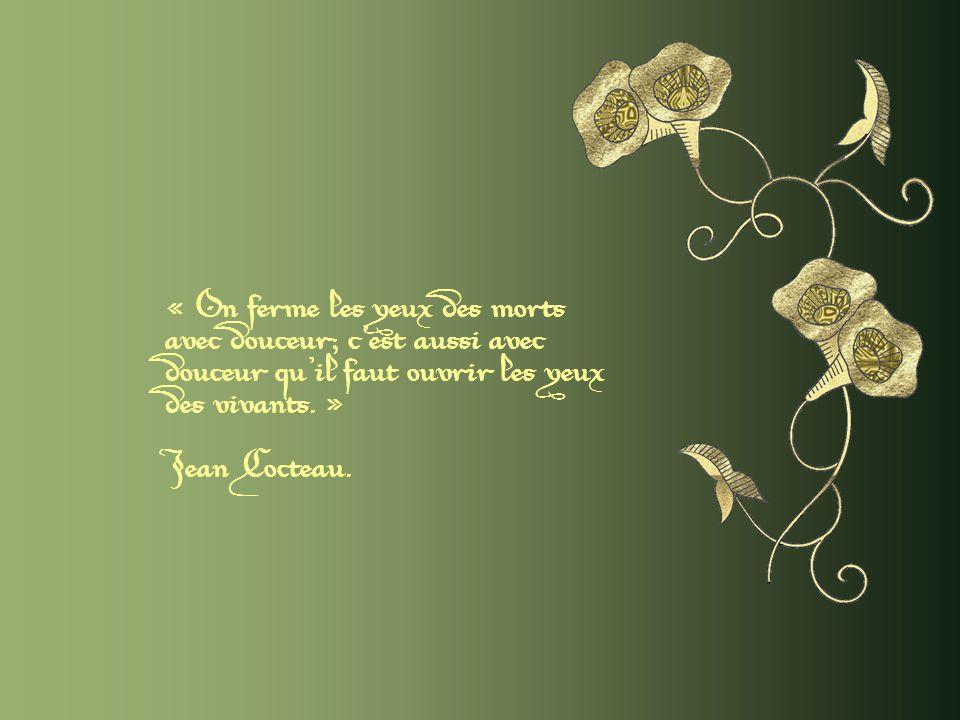 « La douceur est le sel des bonnes mœurs et des belles qualités. » Proverbe oriental.