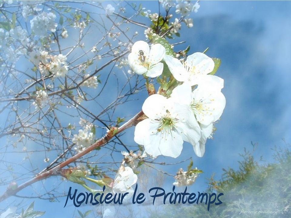 Monsieur le Printemps Poème de : Pierrette Beaulieu Pierrette Beaulieu Photos de : Pierrette Beaulieu Pierrette Beaulieu Trame sonore : La fiera de las flores.