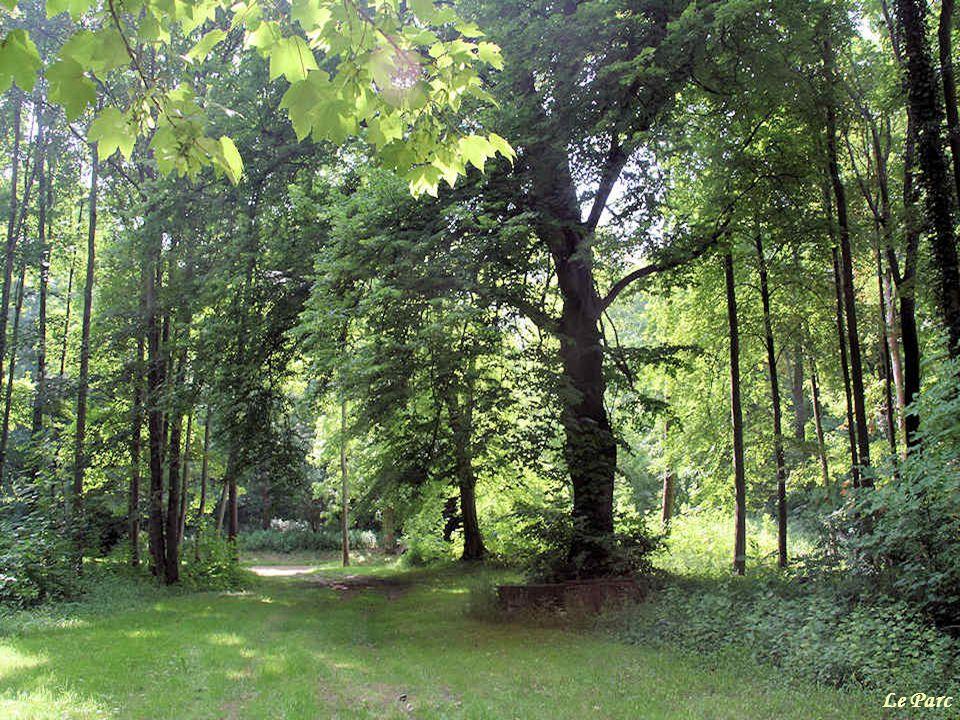 Dans le parc superbe, abritant des arbres séculaires, on peut, en outre, remarquer danciennes carrières, ouvertes par les moines blancs. Elles furent
