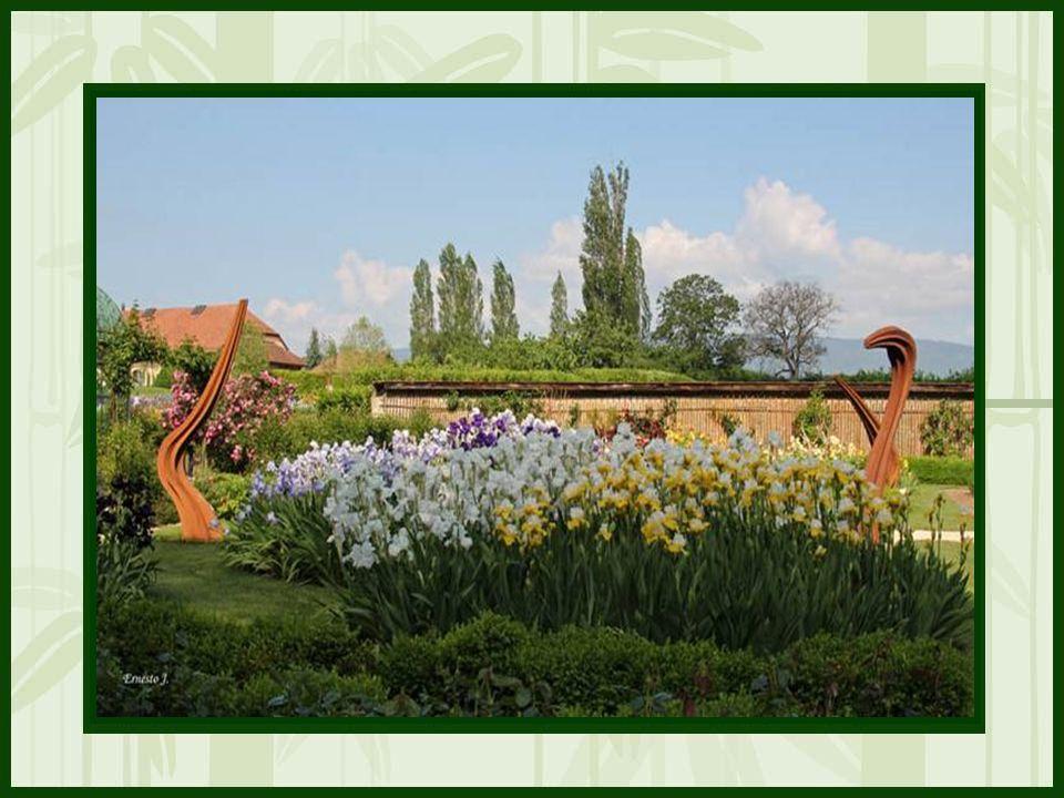 Floralies Printemps de mi-mai à fin juin Environ 600 variétés diris aux couleurs chatoyantes sur une partie du domaine