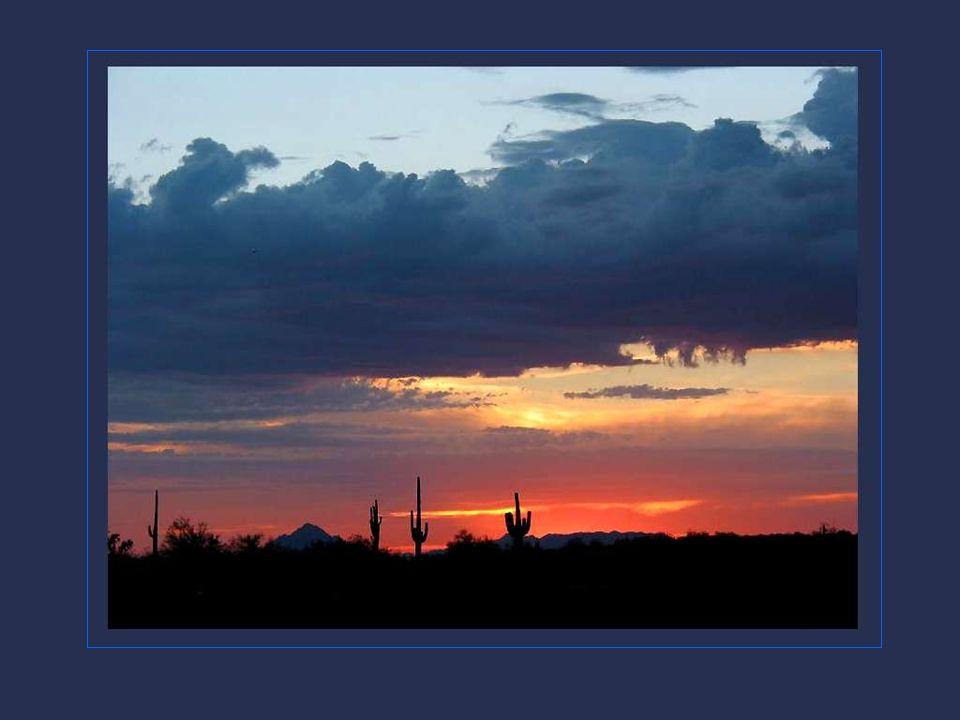 Le nord de l'Arizona est occupé par la Région des Plateaux, une immense plaine qui s'échafaude en falaises et que dominent de hautes mesas. On voit en