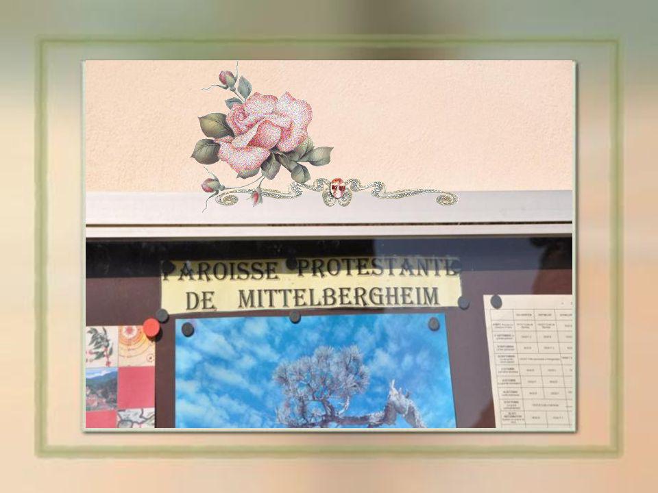 Jusquà la révolution française le village fut administré par un Prévôt (Schutheiss), nommé par Strasbourg.
