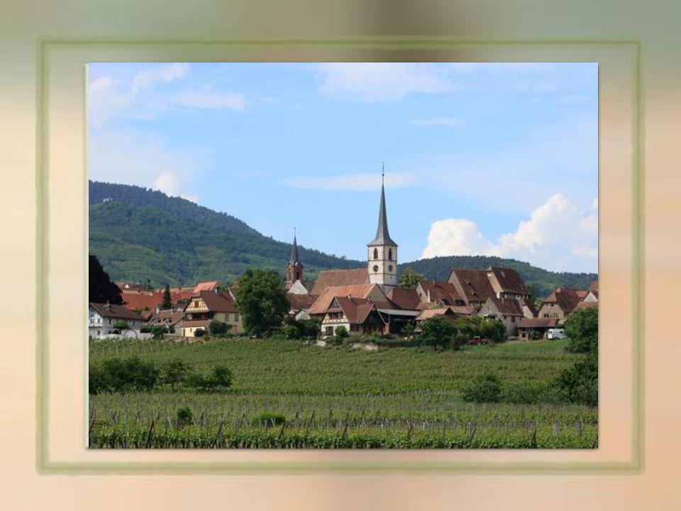 Mittelbergheim : est une commune Française, située sur la route des vins au cœur de la région Alsace entre Colmar et Strasbourg dans le département du Bas-Rhin.