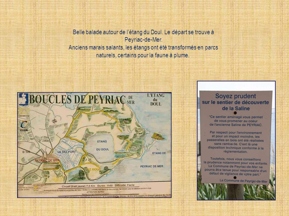Belle balade autour de létang du Doul.Le départ se trouve à Peyriac-de-Mer.