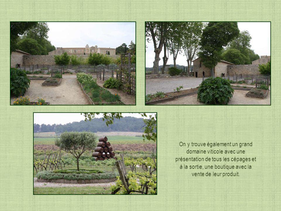 Le jardin de Saint-Blaise Inséparable des abbayes, les jardins avaient une fonction utilitaire: jardin de plantes médicinales pour soigner les moines, jardin potager pour les nourrir, et le jardin bouquetier de fleurs pour les autels..