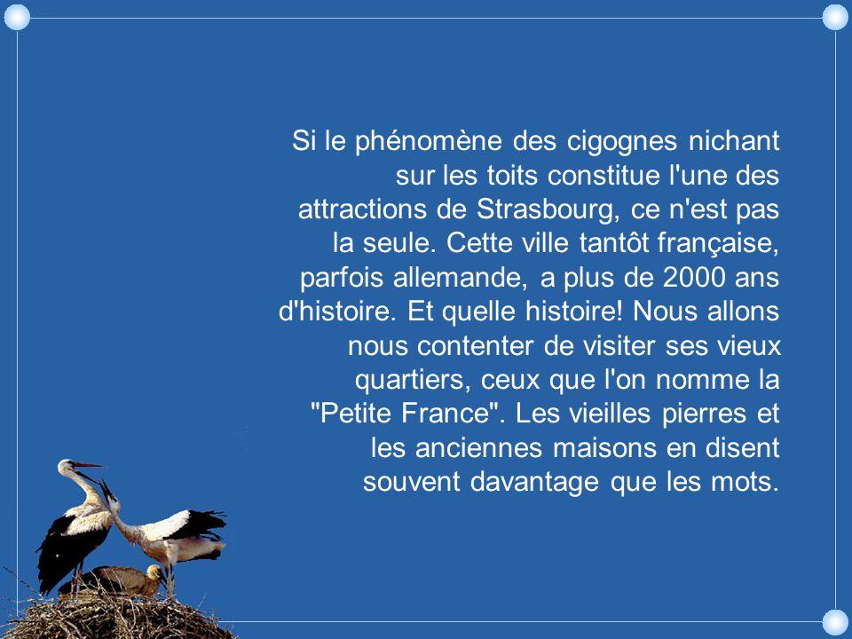 Strasbourg est le berceau de l imprimerie.